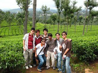 Singara Tea Garden