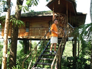 Front of the tree house